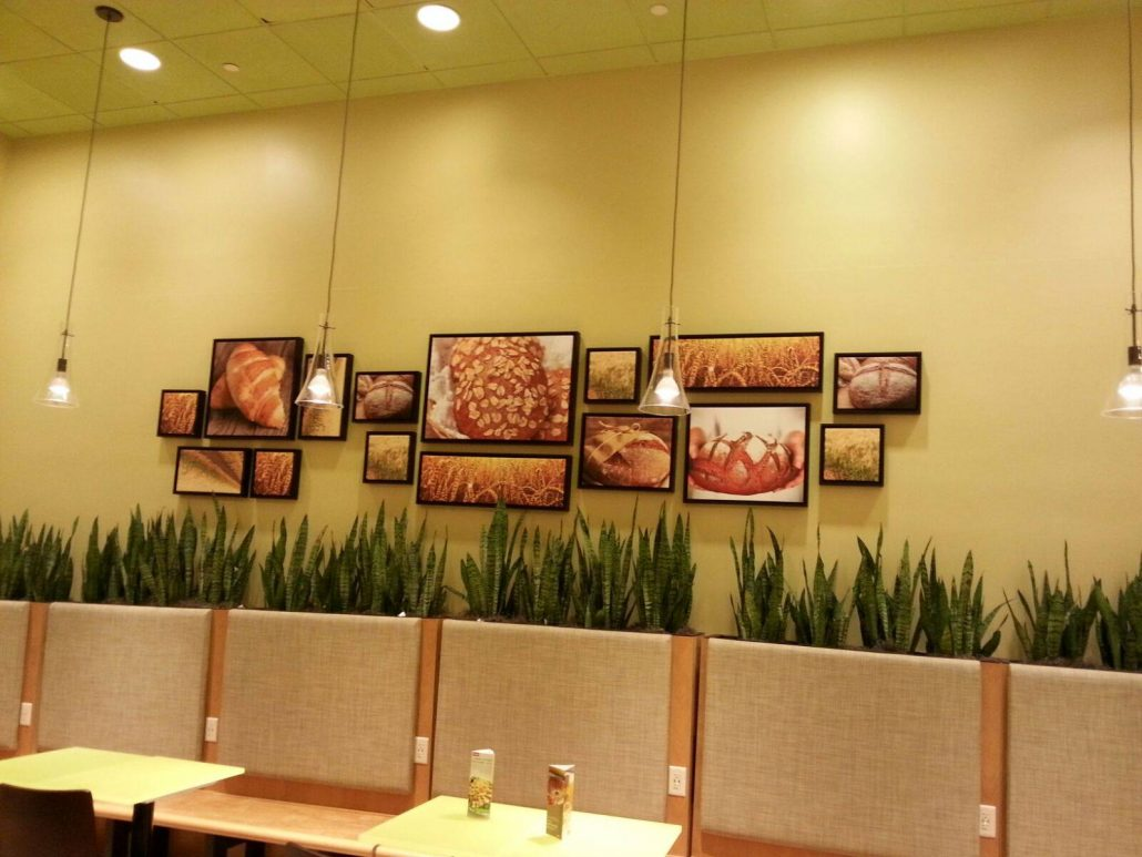 Retail Graphics Installation Services by Graphic Installation Company